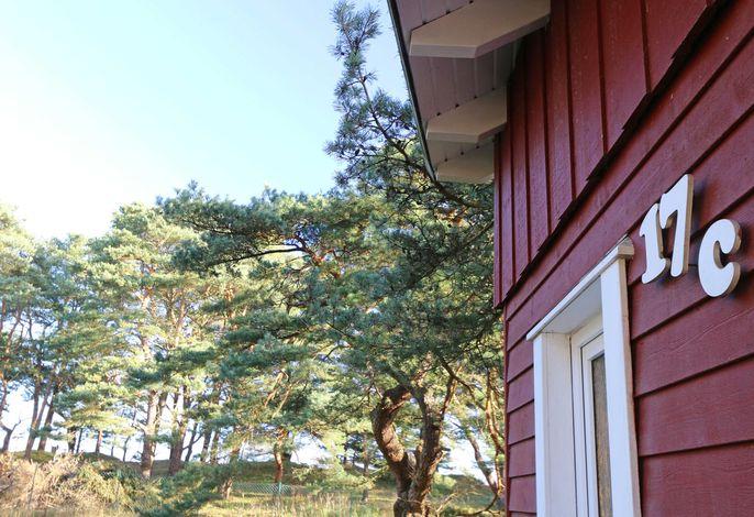 W: Strandhaus Dünenweg 17c mit Terrasse/Kamin