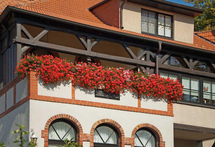 Villa Wiking Hall - historisches   Gebäude -zentrale Lage