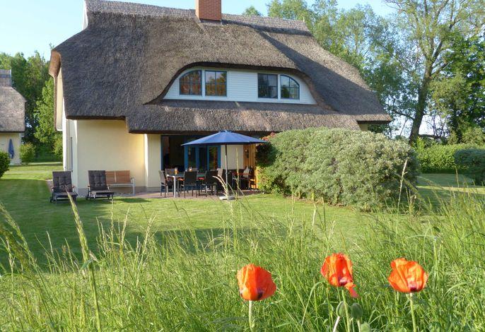 Behagliches Reetdachhaus Eibe 1: Sauna, Kamin, 8 Personen