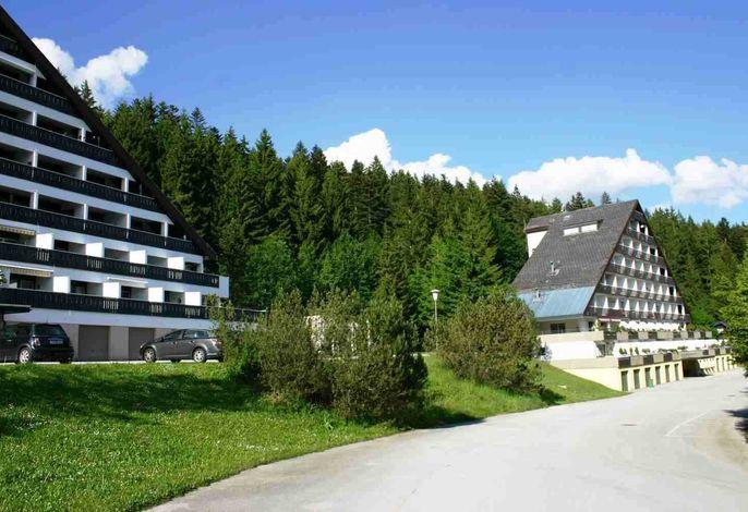 Apartment Alpine