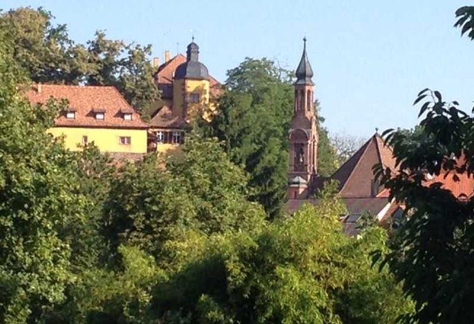 Blick auf das Mahlberger Schloss