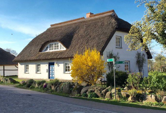Haus Ketzenberg 1 Lütt Mööv