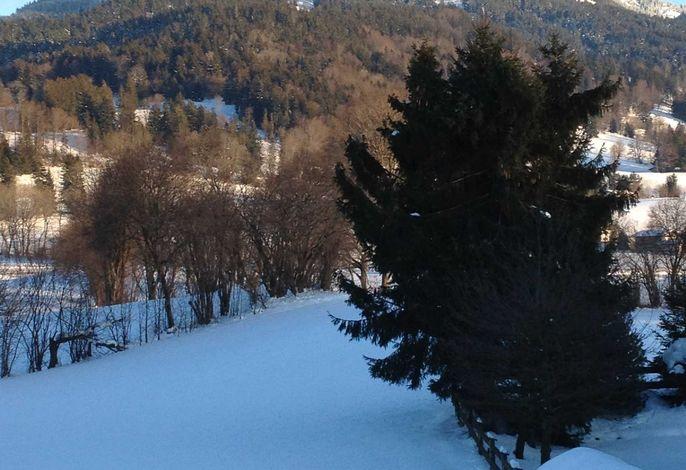 Ferienwohnung Bergzeit - Zollner Priska