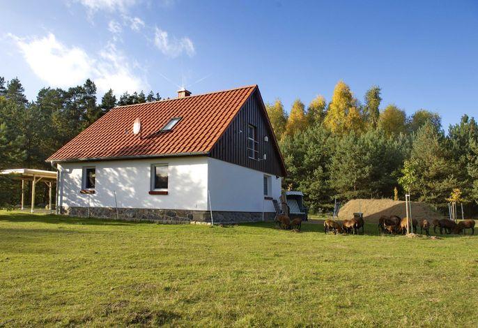 Landsitz in Blankensee - Ferienhaus 2