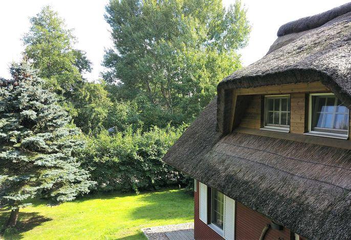 Haus-Rosenrot