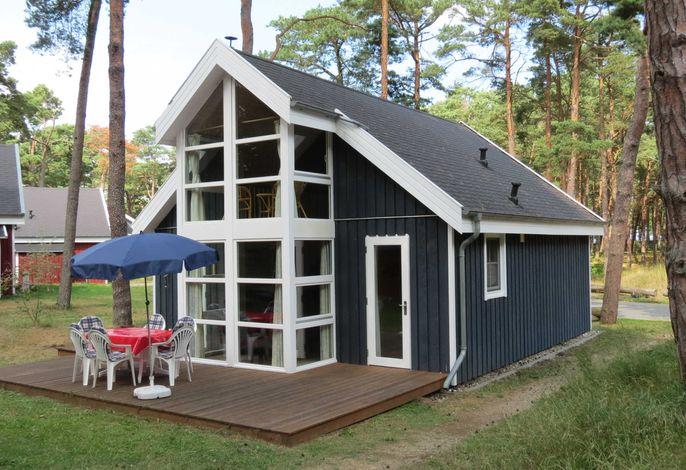 H: Ferienhaus Walddüne - Strandpark Baabe - ca.100m Strand