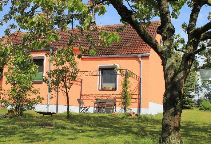 Ferienhaus Cölpin SEE 8691