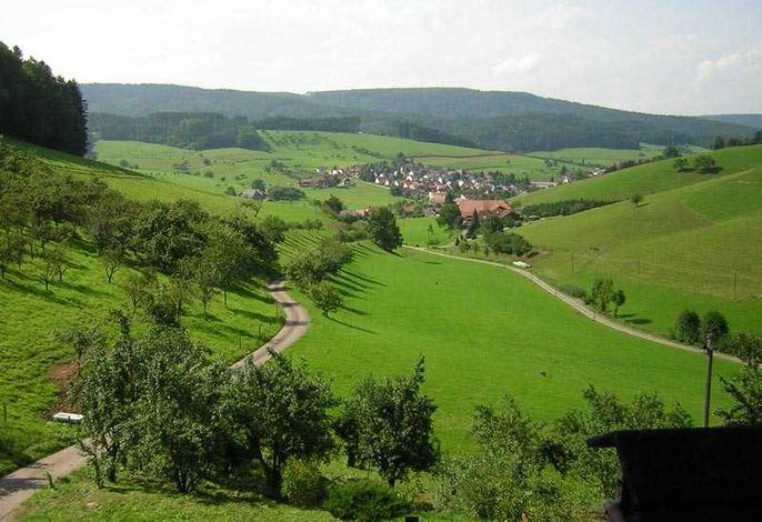 Sommerlicher Ausblick vom Hof auf Schuttertal