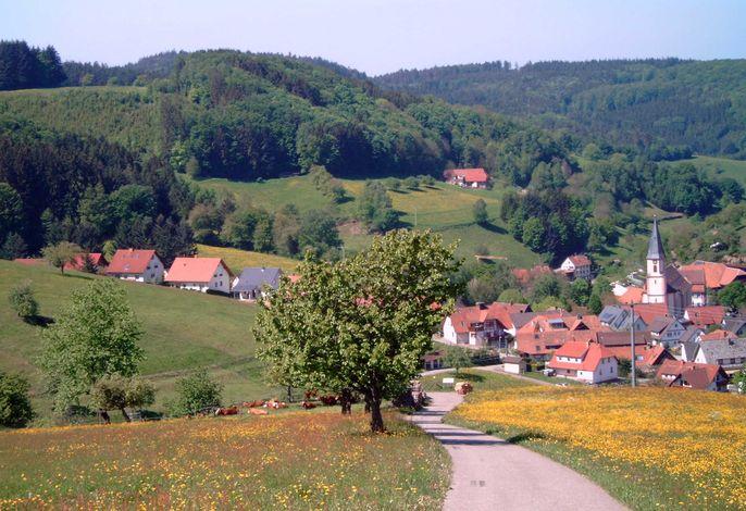 Einer von vielen Wanderwegen in Richtung Schweighausen