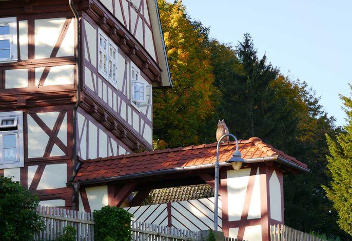 Ferienwohnung am Schlosspark in Blankenburg