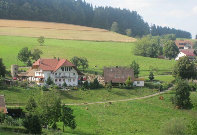 Dischhof