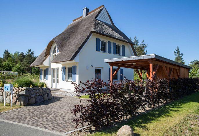 Ferienhaus Schilfrohrsänger 48
