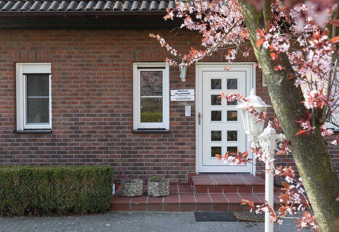 Appartementhaus Zingst - Urlaub zwischen Meer & Bodden