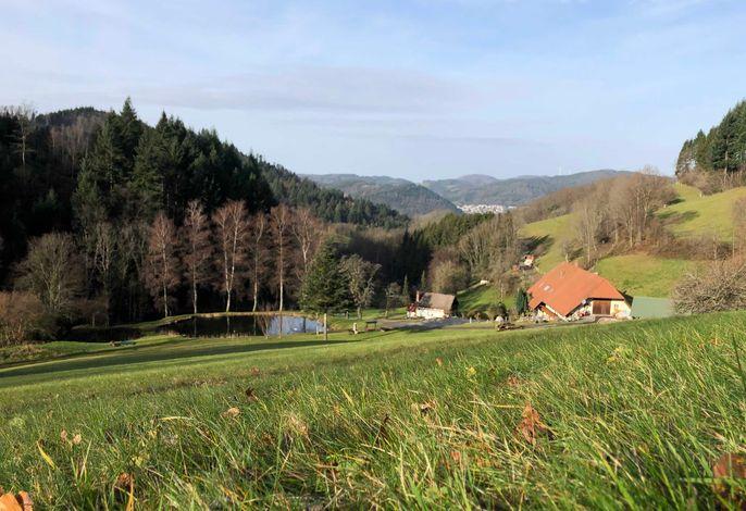 Langmichelhof