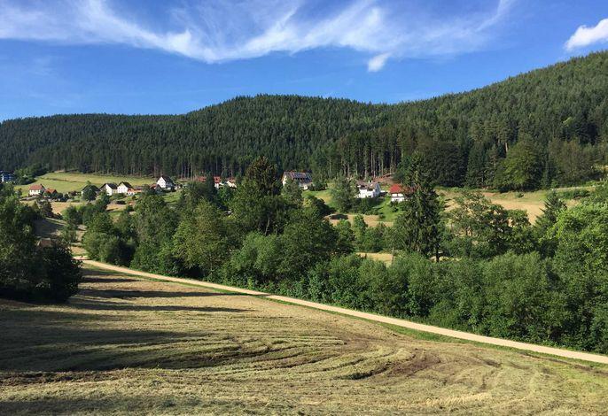 Blick auf den Tonbachwiesenweg, Nähe Fewo BEST