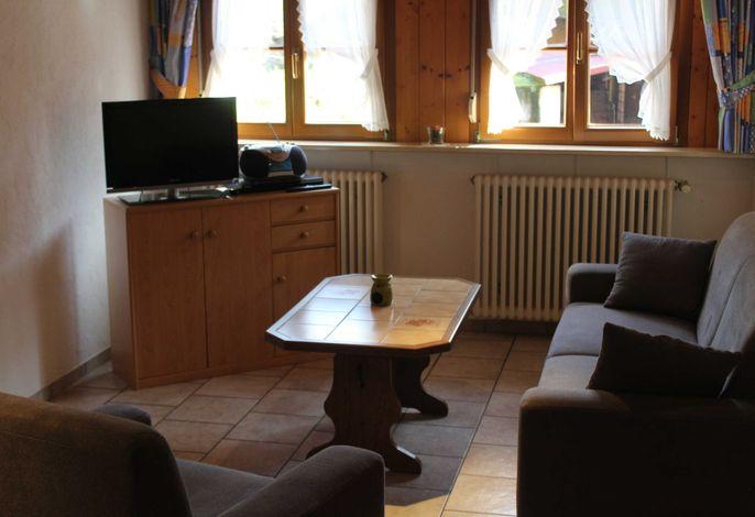 Gemütliches Wohnzimmer mit SAT-TV.