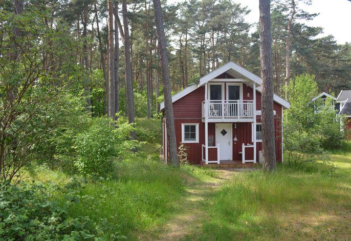 F:  Ferienhaus Sanddorn - Strandpark - ca. 80m Strand