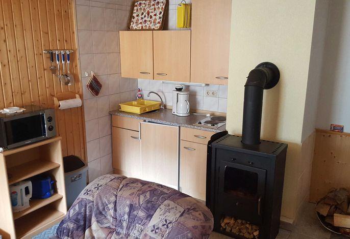 Gemütliches Wohnzimmer mit Pantryküche und Kamin