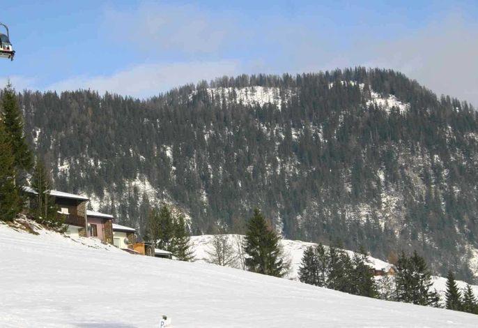 Ferienhaus Almrausch
