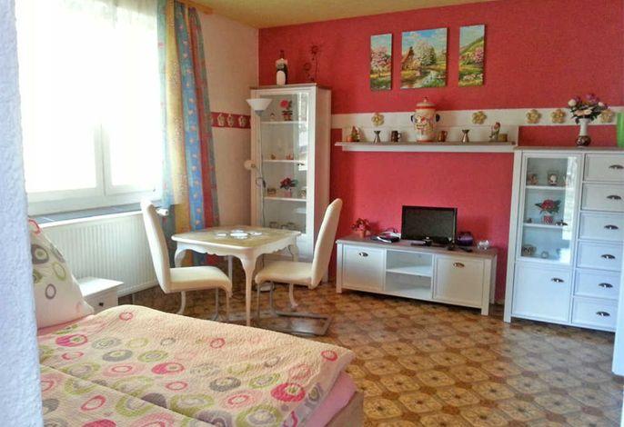 kombiniertes Wohn- und Schlafzimmer mit TV und Doppelbett