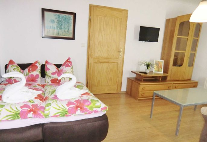 Wohn-Schlafraum mit Doppelbett und TV