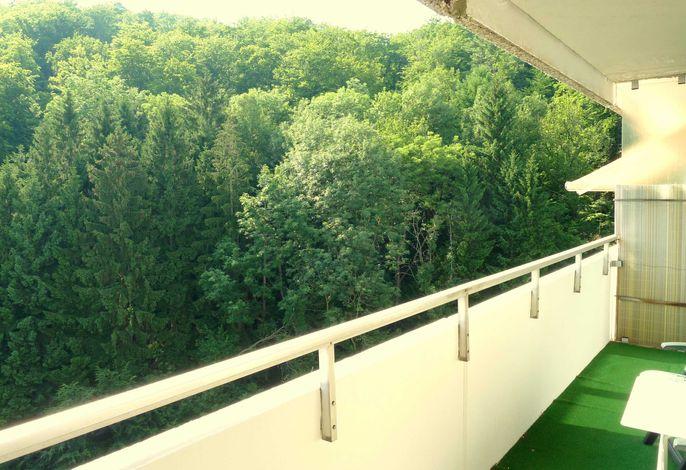 Ferienwohnung von Damm, neu renoviert