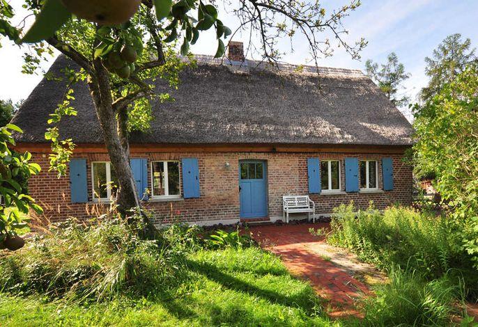 Historisches Reetdachhaus mit Bauwagen und großem Obstgarten - Ueckermünde / Ostsee