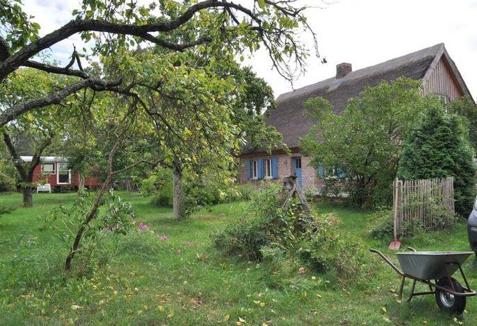 Historisches Reetdachhaus mit Bauwagen und großem Obstgarten