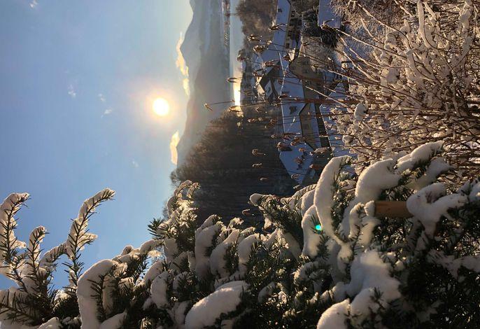 Das Alpbach Suiten