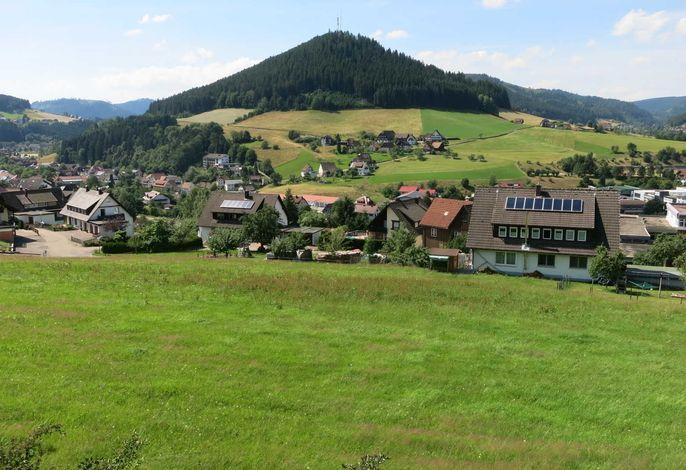 Panoramaaussicht vom Garten aus