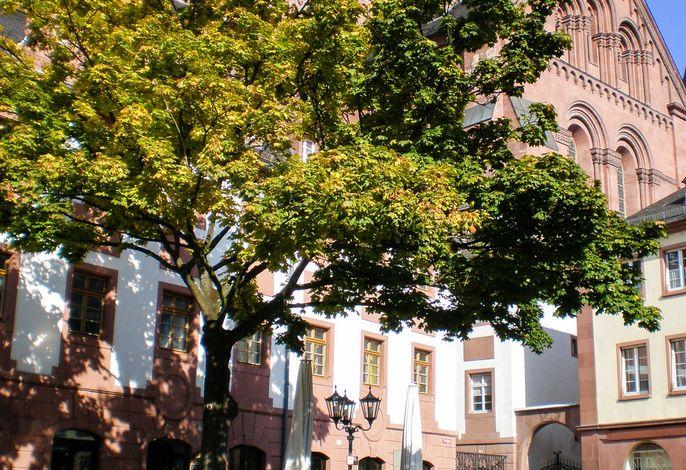 City-Appartement Mainz Stadtmitte