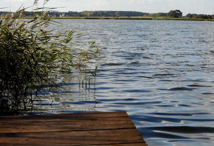 Ferienhaus am Nepperminer See