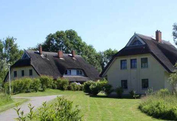 Idyllisches Reetdachhaus Weißdorn 1 mit Sauna und Kamin