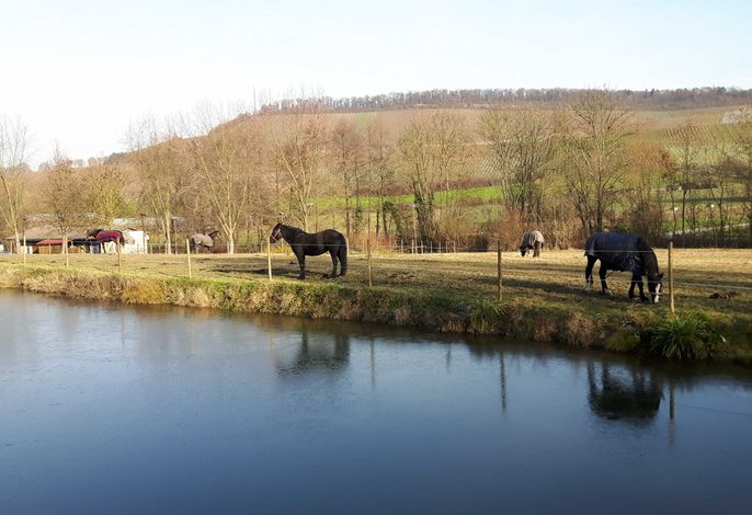 Ferienwohnungen am Nonnenbach