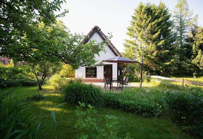 Reetdach Ferienhaus nahe Ostseebad Kühlungsborn