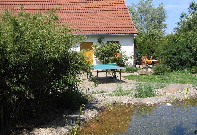 Kleines Ferienhäuschen an der Müritz mit Panoramablick