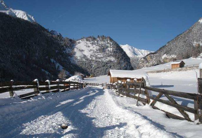 Activ Alpenblick