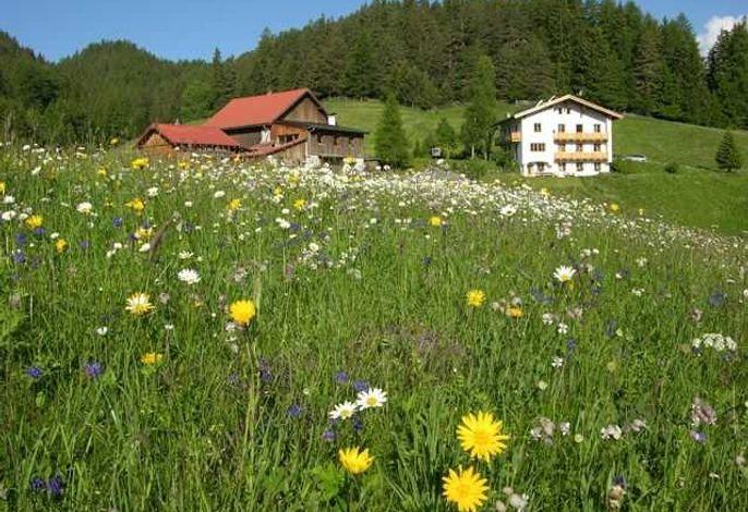 Bauernhof Tiefhof