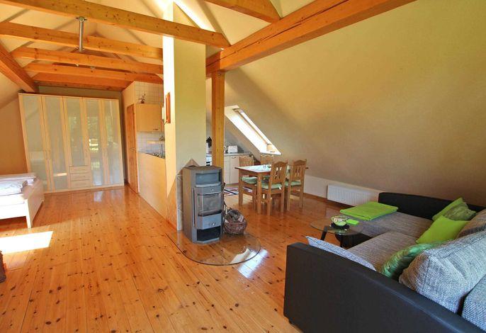 Kombinierter Wohnraum mit offener Küche und Schlafbereich