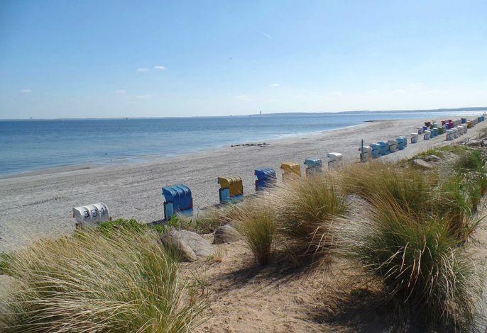 292 / Sonne-Sand und Meer warten auf Sie