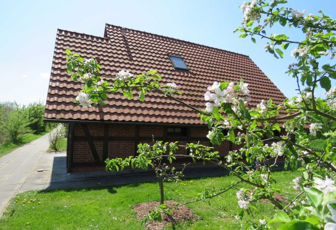 Ferienhaus Hanse im Feriendorf Altes Land