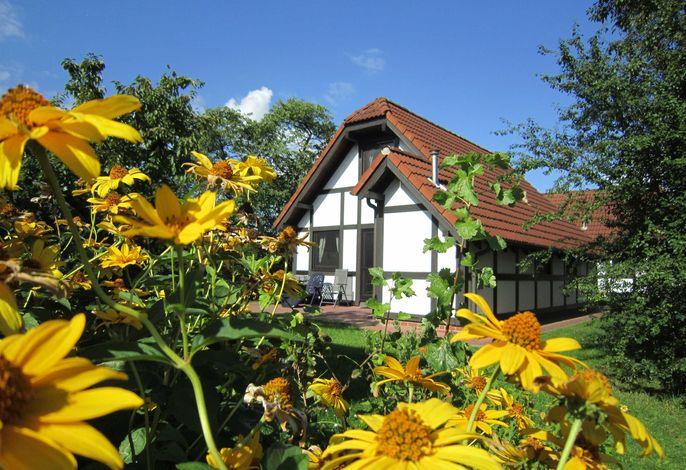 Ferienhaus Deichgraf 86 im Feriendorf Altes Land