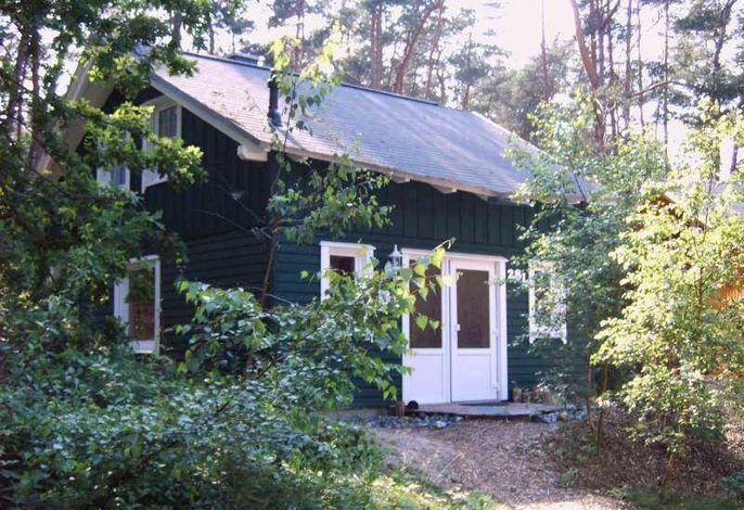 W: Strandhaus Dünenweg 28l mit Terrasse/Kamin/Thermium