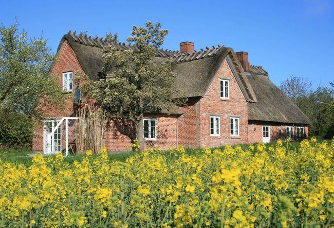 Altes Schusterhus