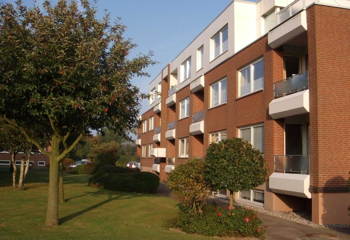 Vogelsand 323