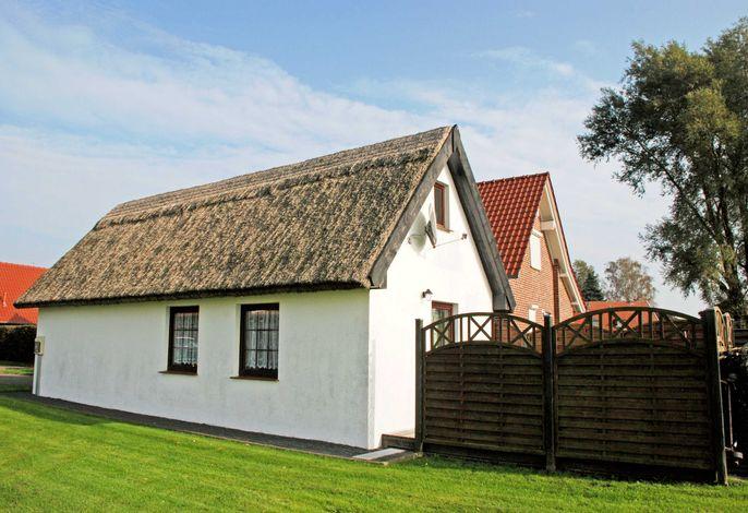 Ferienhaus mit Reetdach am Lobber Deich