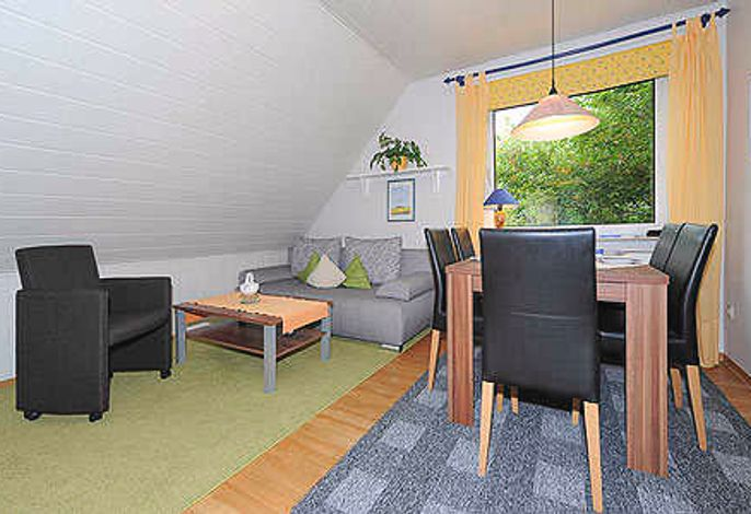 Wohnraum mit integrierter Küche und Essgruppe