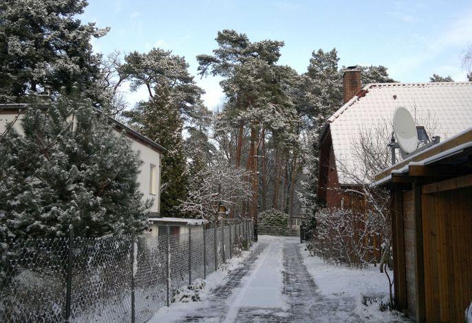 '4er Müggelwaldzimmer'-ruhiges+gemütl. modern-rustikales Apa