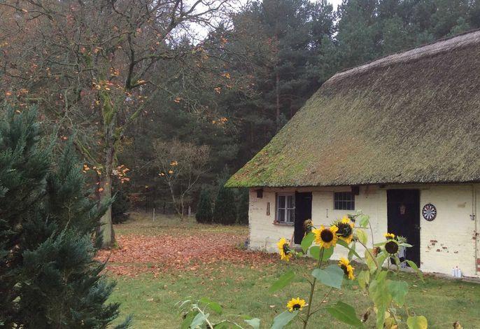Fewo nahe Torgelow & Stettiner Haff in d. Ueckermünder Heide