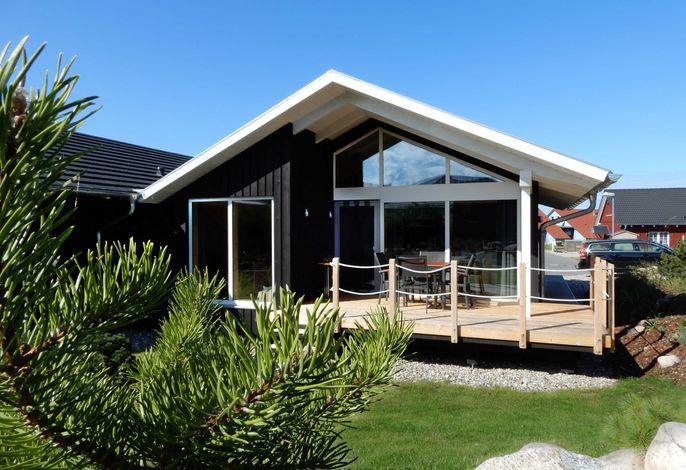 Schwarzes Holzferienhaus an der Ostsee (Gartenglück) - Sauna